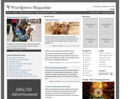 Tema de la revista WordPress: captura de pantalla.