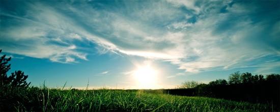 Puesta de sol en la hierba