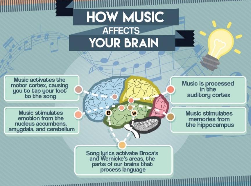 musica y cerebro