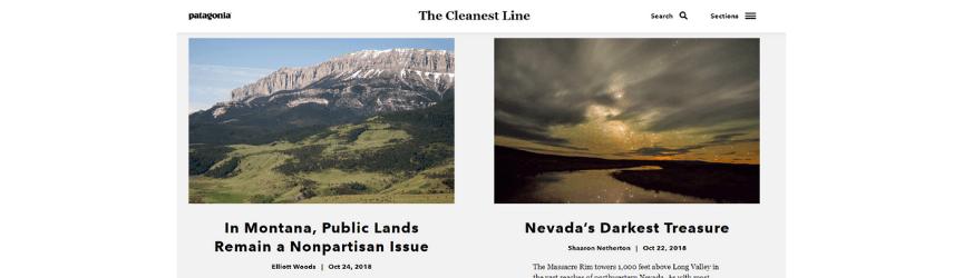 Una captura de pantalla del blog de Patagonia